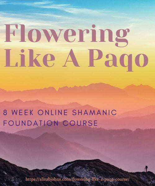 Flowering Like a Paqo (1)
